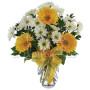 bouquet_di_gerbere_margherite