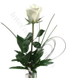 rosa-bianca1.jpg
