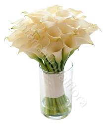 bouquet-di-calle-bianche