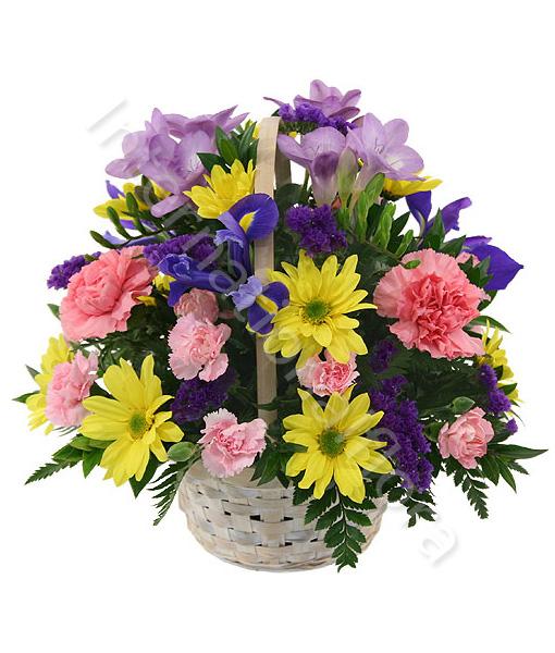 cesto-di-garofani-iris-margherite